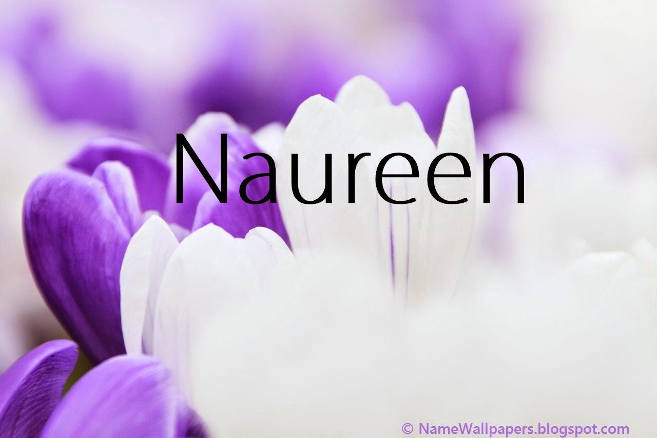 Naureen Name Wallpapers Naureen Name Wallpaper Urdu Name Meaning
