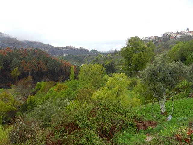 Португалия. Путешествие по Долине Дору