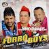 Forró Boys Vol 5 - (CD) Vale A Pena - 2015