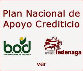 PLAN NACIONAL DE APOYO  CREDITICIO      BOD – FEDENAGA 2014