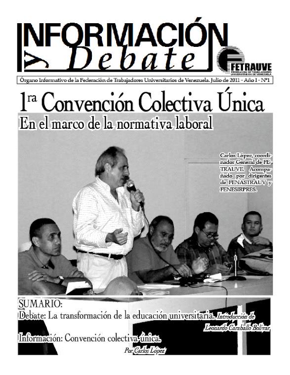 Información y Debate, Nº1, julio 2011
