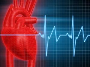 Penyebab Penyakit Kardiovaskular (Jantung & Pembuluh Darah)
