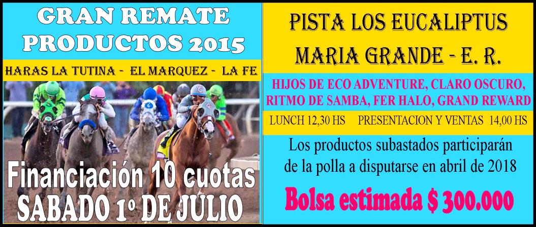 REMATE PROD. 2015 - 01.07.2017