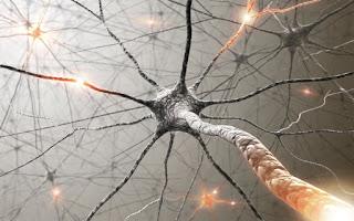 Implantable Brain Electrodes Capture Single Neuron Signals