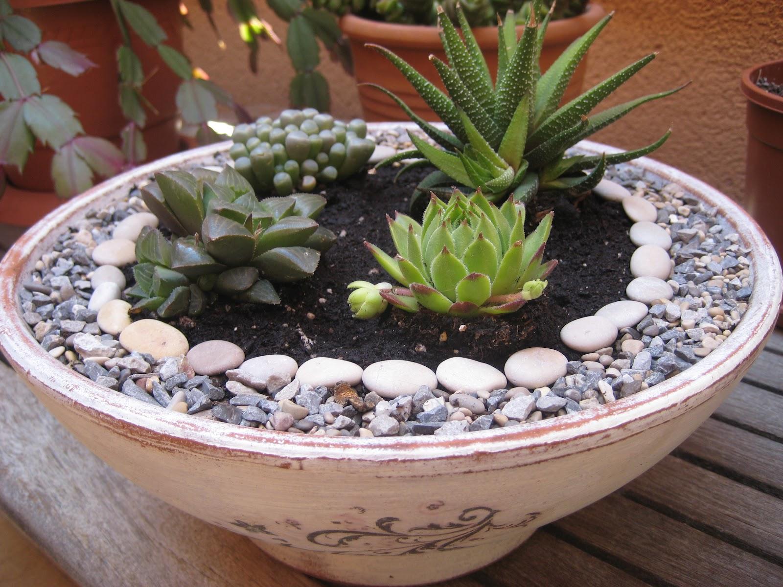 Malena valc rcel original art peque o jard n zen con for Plantas decoradas con piedras