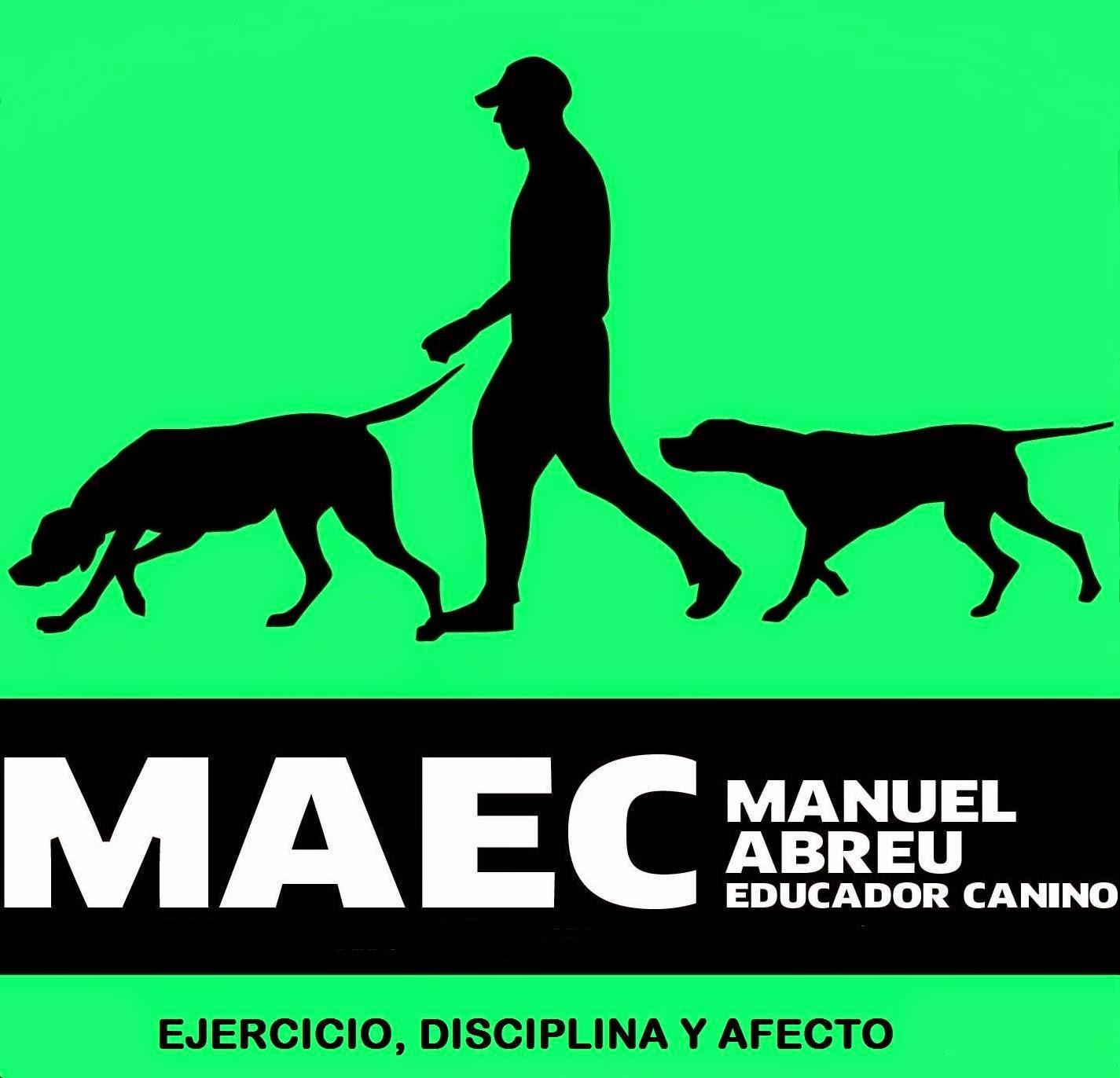 ¿Buscas al Mejor Educador Canino?