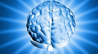 mitos acerca del cerebro