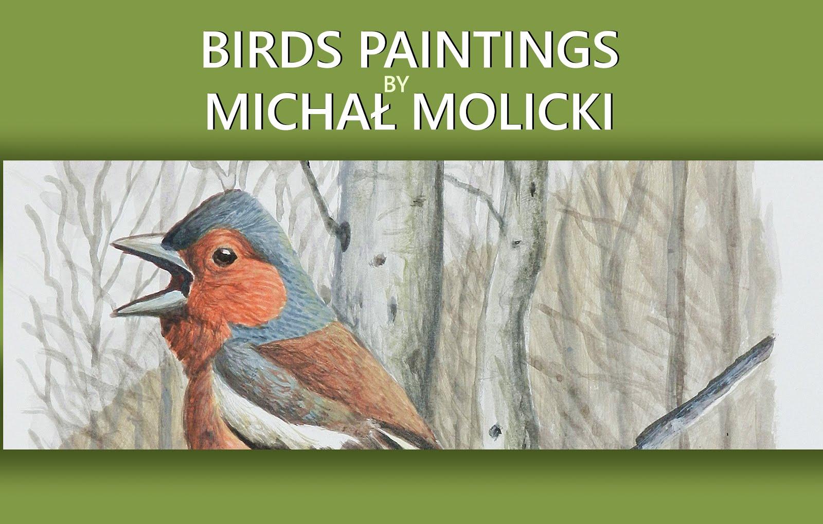 BIRDS PAINTINGS by MICHAŁ MOLICKI