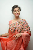 Hamsa Nandini photos at Legend audio-thumbnail-1