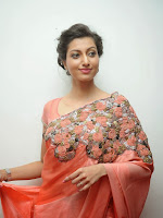 Hamsa Nandini photos at Legend audio-cover-photo