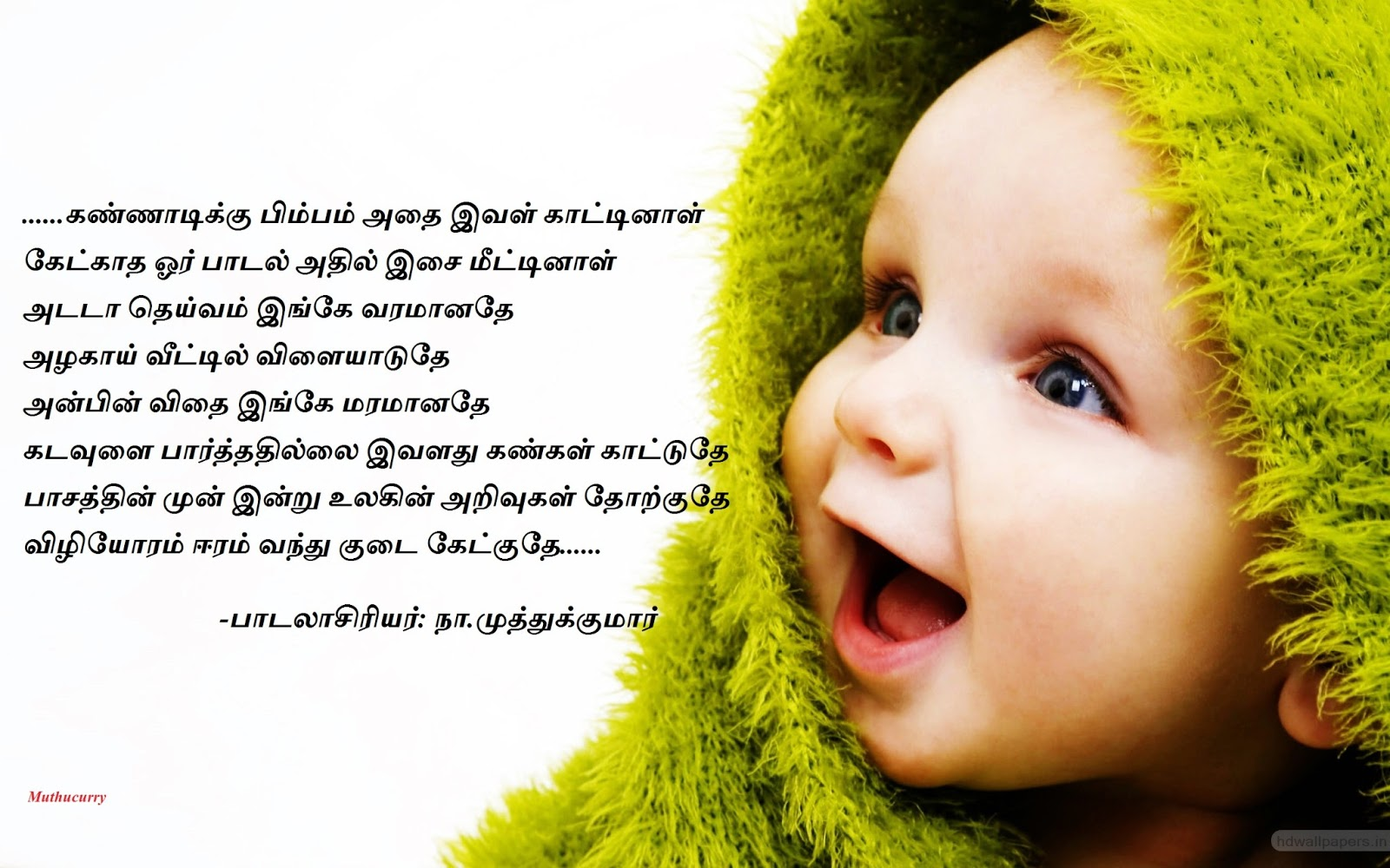Cute Baby Photos With MessagesCute Baby Photos With Messages - little_cute_baby-wide