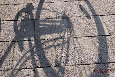Skugga av cykel på stenlagd trottoar. foto: Reb Dutius