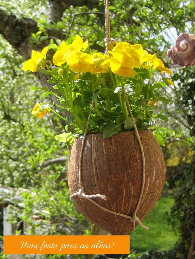 coco-barbante-e-flores