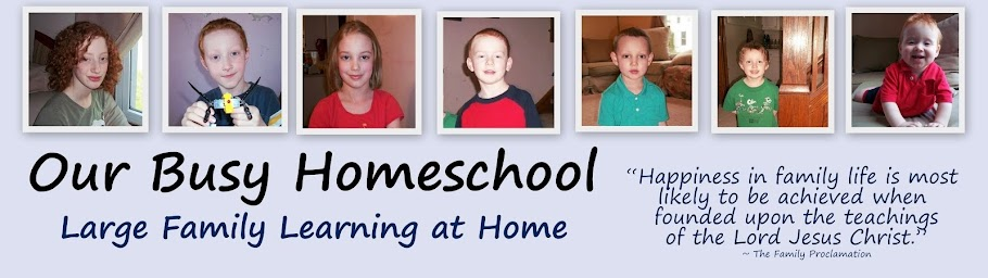 Our Busy Homeschool