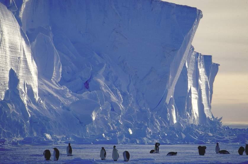 Антарктида 1964 - история в фотографиях: https://foto-history.livejournal.com/7796240.html