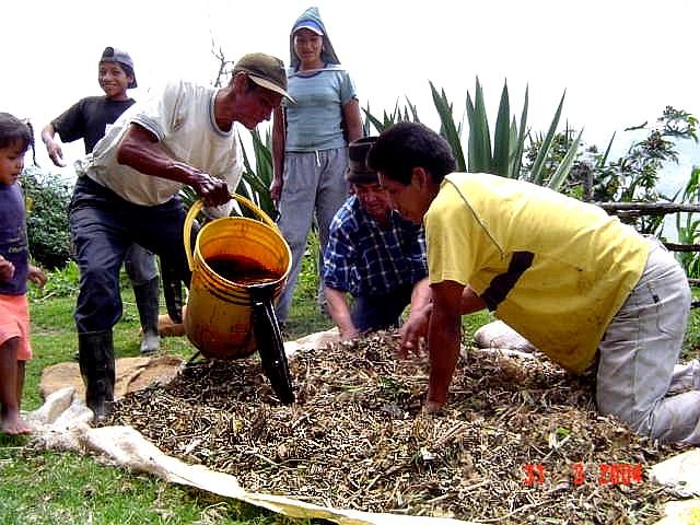 Preparaci n de un abono org nico 100 natural - Hacer abono organico ...