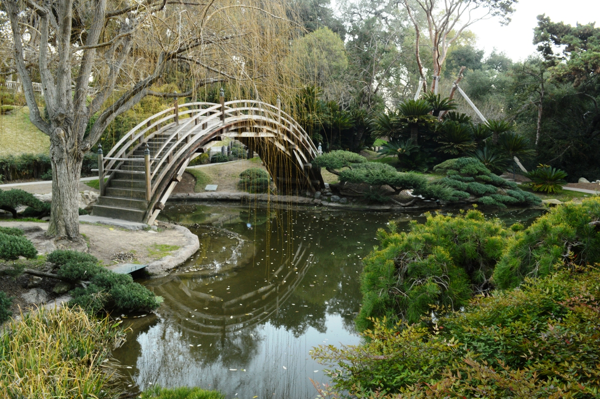my own 100 hikes hike 2016 004b huntington library and gardens