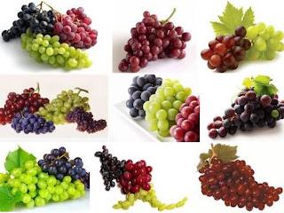Buah Anggur, Buah Bermanfaat Untuk Umat Manusia