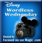 focused on the magic disney wordless wednesday logo