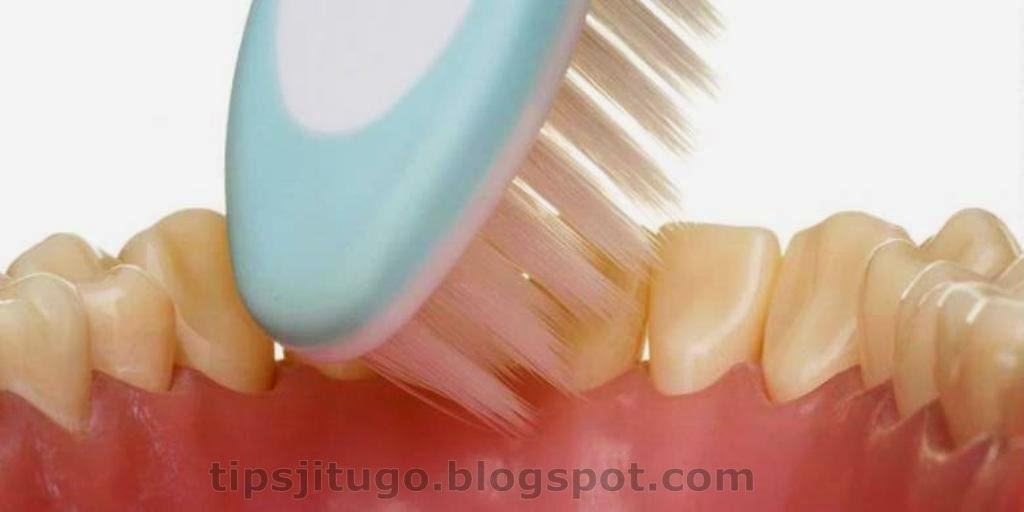 Cara Sikat Gigi Yang Benar Cara Sikat Gigi Yang Baik