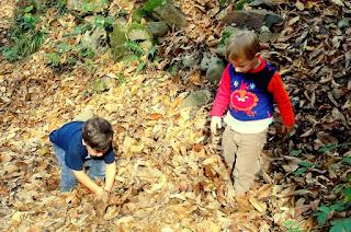 Ruta Castañeru Montés, Asturias. Niños jugando con hojas