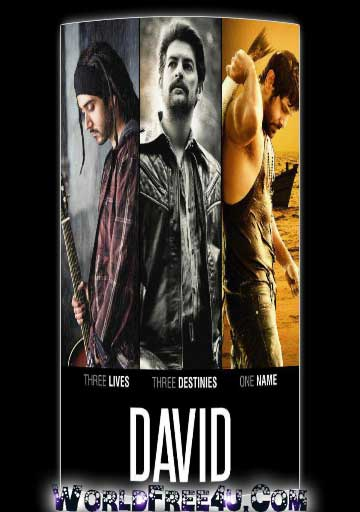 Poster Of Bollywood Movie David (2013) 300MB Compressed Small Size Pc Movie Free Download World4ufree.Org