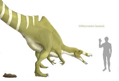 Ichthyovenator fossil