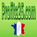 Une régie publicitaire en ligne qui partage ses revenus avec ses membres