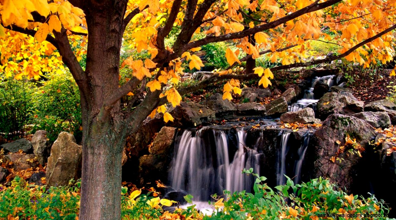 Stunning Natural Scenery Wallpaper  Wallpaper Gallery
