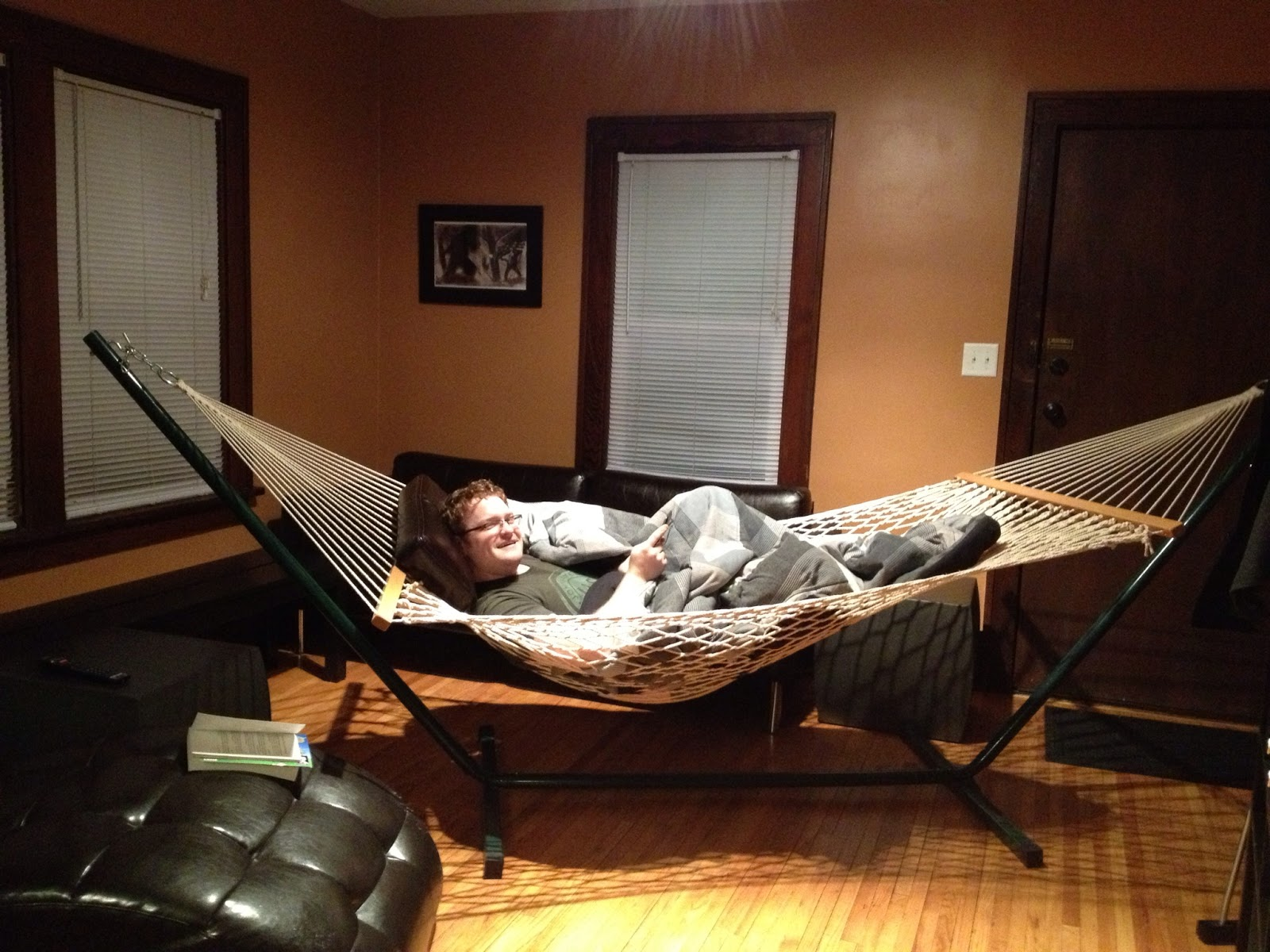 day 27: hammock in the living room