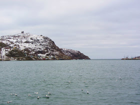 Signal Hill, StJohns Harbour (clic for more pics)