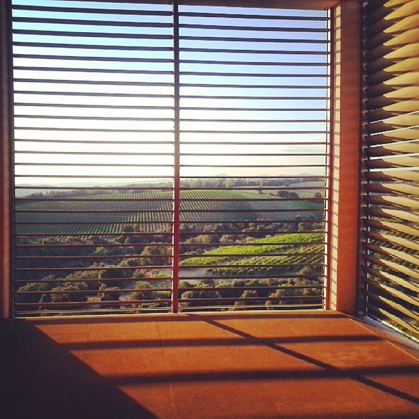 Vineyards and olive groves seen through a modern window at a winery in Cinigiano