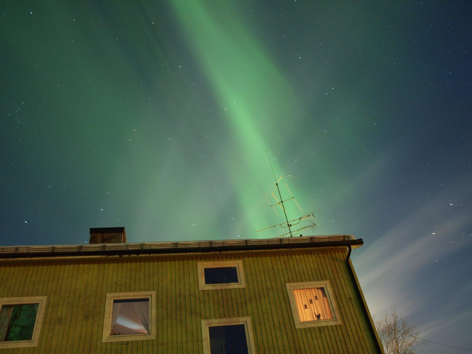Polar Lights Casey