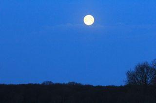 photo of setting full moon