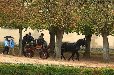 automne chasseurs Saint-Hubert trompes attelages jardins château Fontainebleau Seine-et-Marne