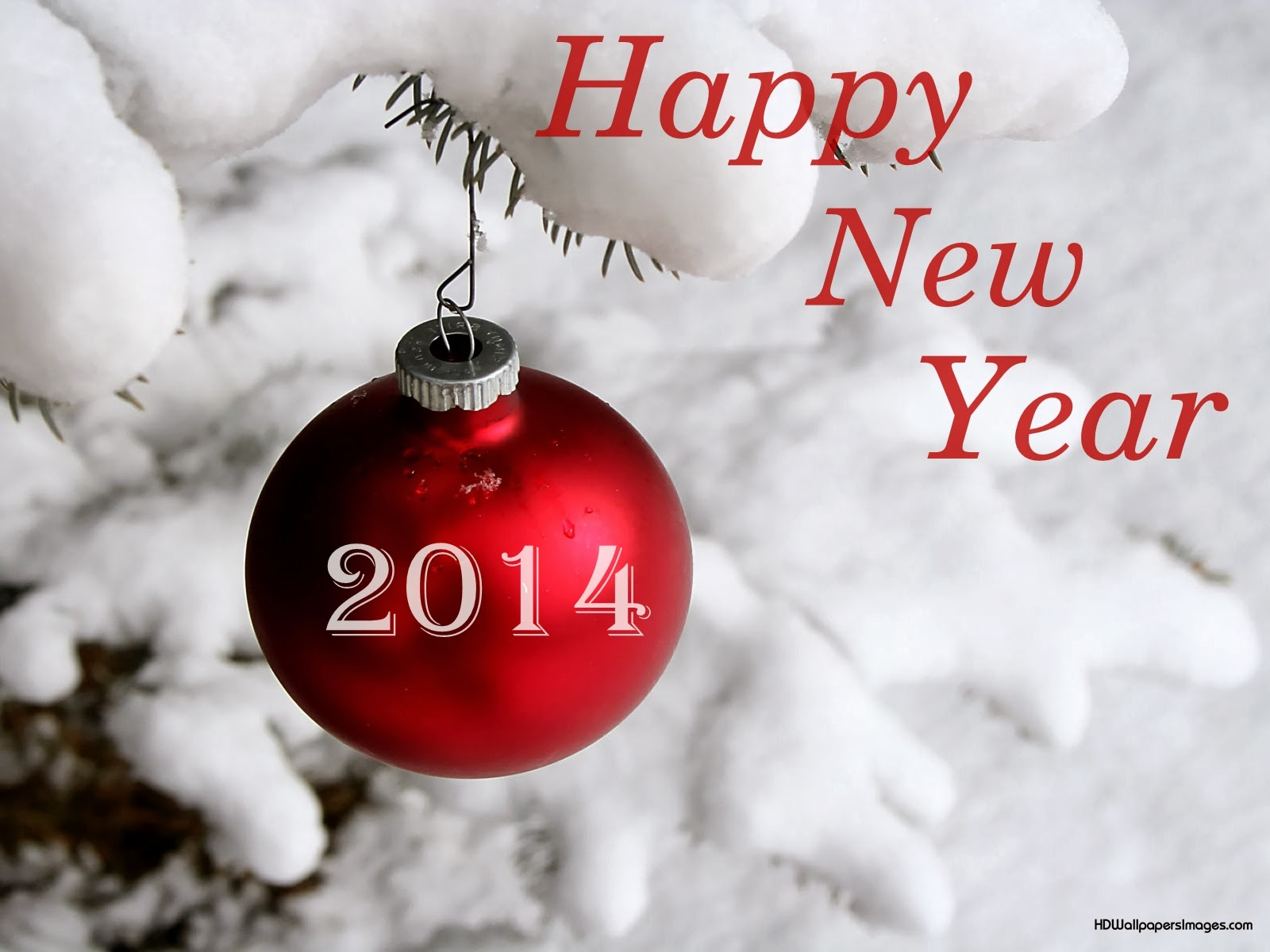 New Year Wishes From Travel Universally