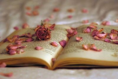 escritora de novela romantica