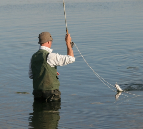 How to get started saltwater fly fishing tacklebargains for Saltwater fishing basics