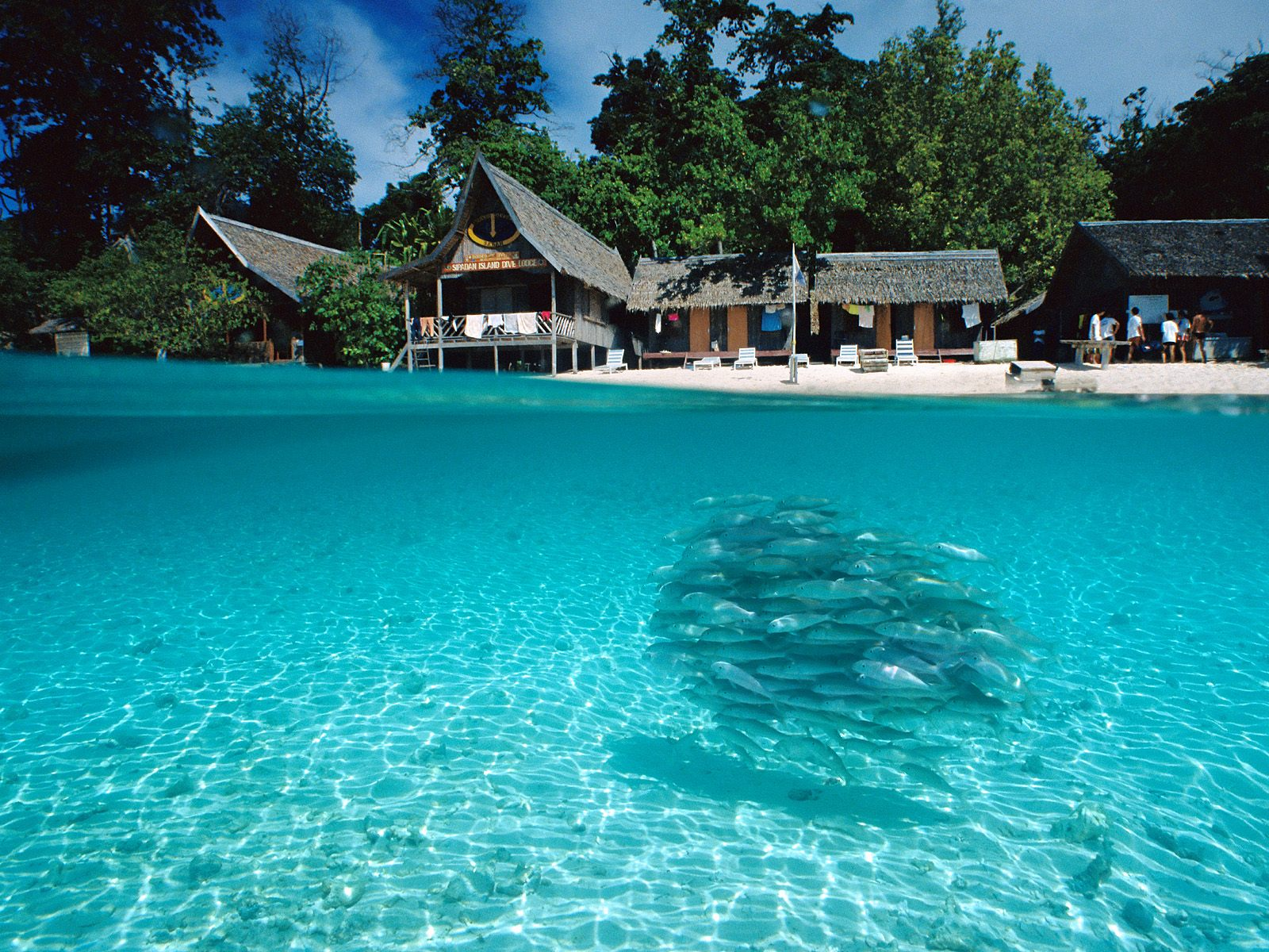 http://3.bp.blogspot.com/-Jt7DfFca7S4/UHZ7-tDr3tI/AAAAAAAAIhs/ESAKGp_2UFM/s1600/beach-wallpaper-hd-1.jpg