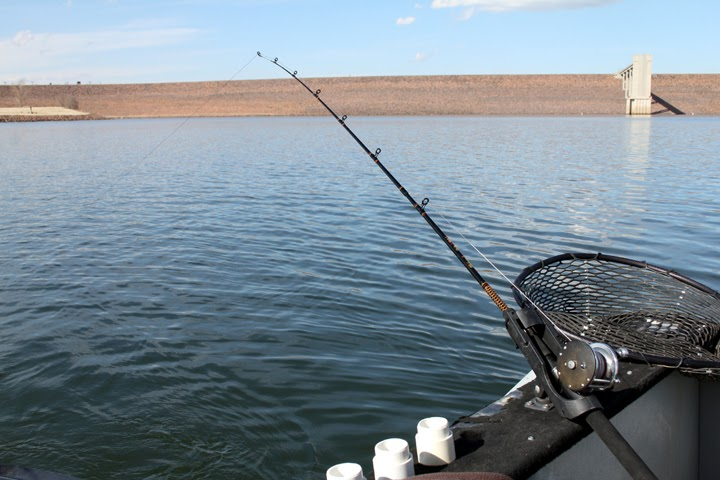 Rocky mountain adventure chatfield state park for Chatfield reservoir fishing