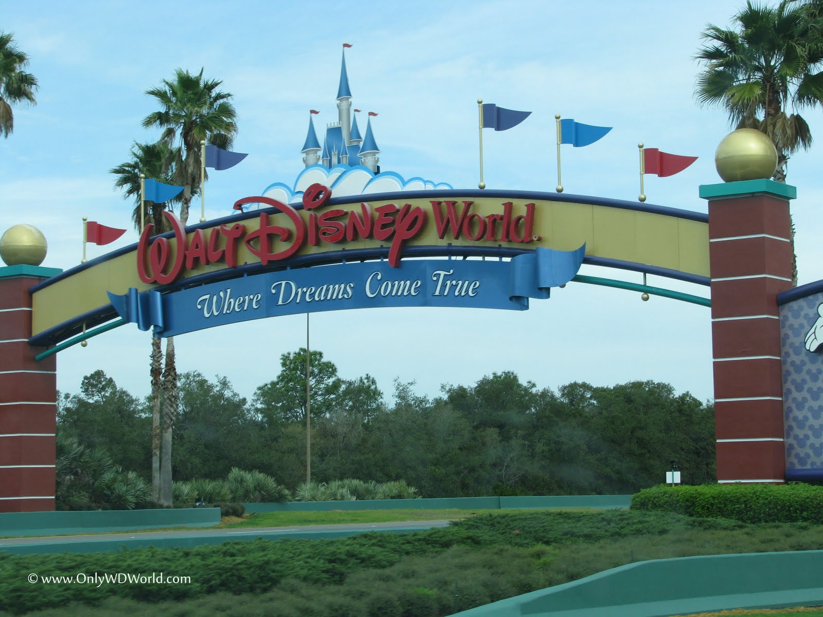 disney world vacation Cheap walt disney world vacations: find vacation packages to walt disney world on tripadvisor by comparing prices and reading walt disney world hotel reviews.