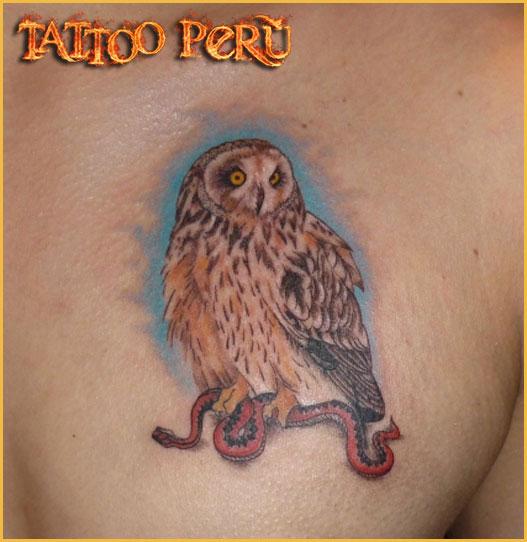 FOTOS DE TATUAJES Tatuajes_de_lechuzas
