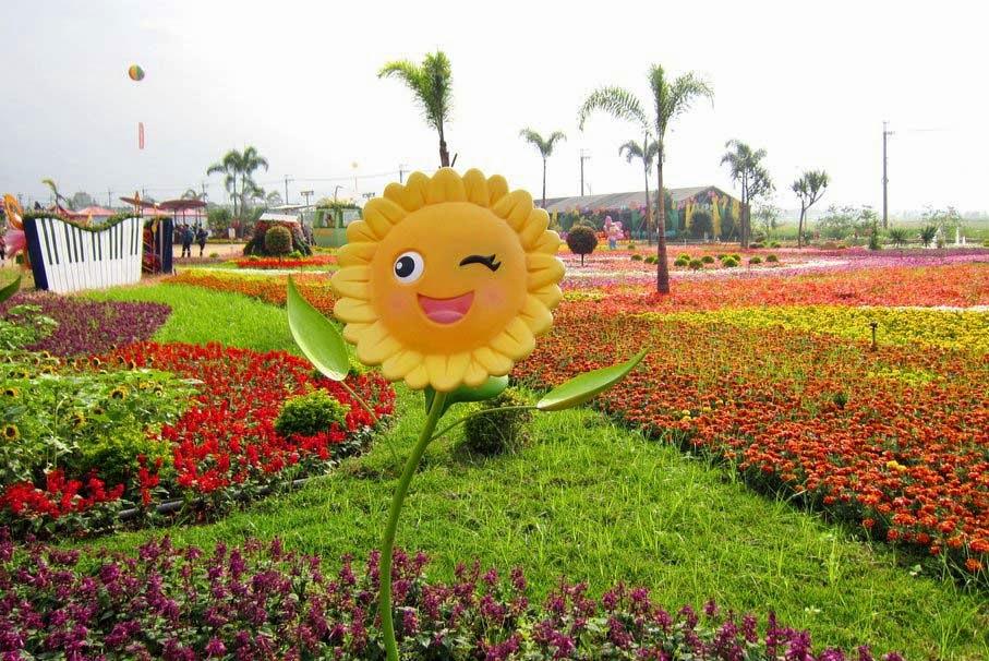 lovely-flower-carpet