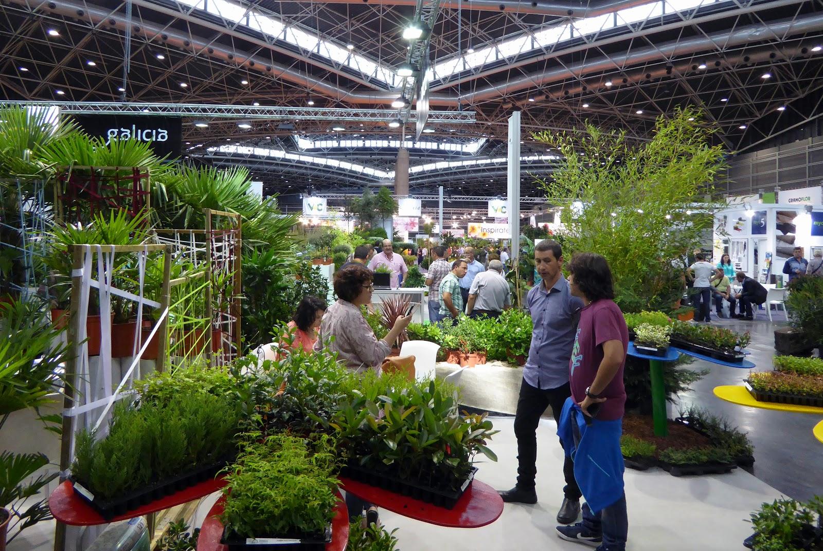 thm tecnolog as de la horticultura mediterr nea 3 de 3