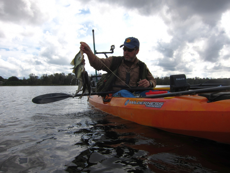 Kayak angling for big fish fishing report crappie 12 8 12 for Kayak fish stringer