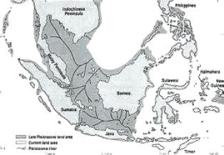 Kitab Henokh Ungkap Peradaban Lemuria Zaman Nabi Idris Alayhisalam