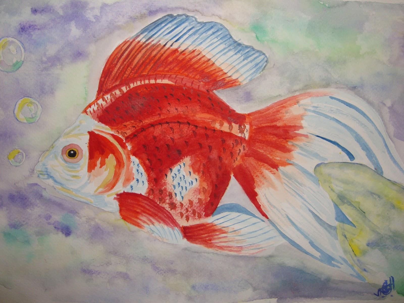 mi vida en acuarela pez chino