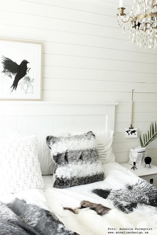 sovrum, tavla, tavlor, svart och vitt, svartvit, poster, posters, print, prints, sovrummet, tempur, sänggavel, liggande panel, sängbord, korp, vykort, världskarta, fågel, fåglar, konsttryck, annelies design