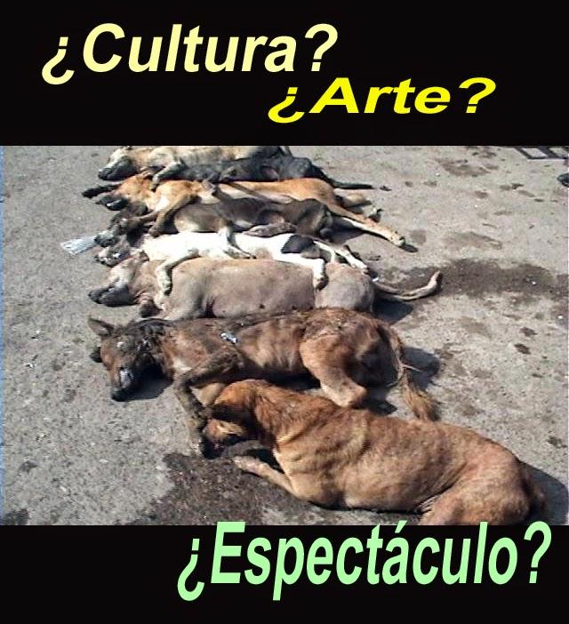 perros, matanza. muerte, muertos, toros