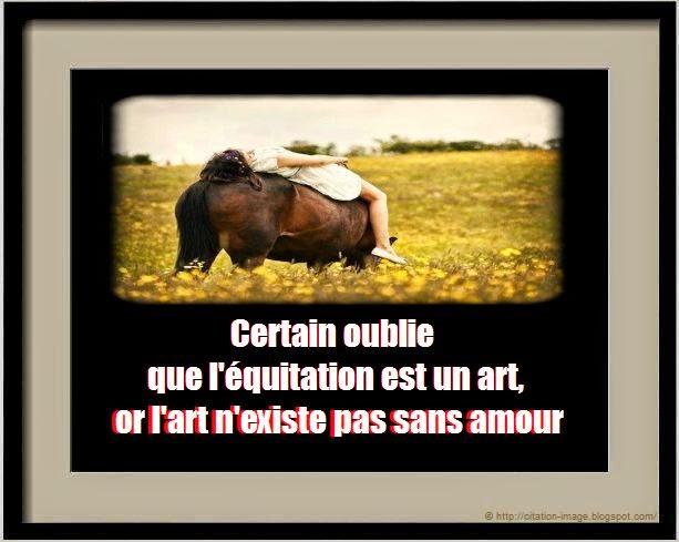 Magnifique citation equestre en image